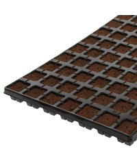 Eazy Plug `n Grow cuttings tray 3,6 x 3,6cm - 77 pcs.