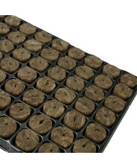 Speedgrow Propagation Tray Large Plugs (84 pcs)