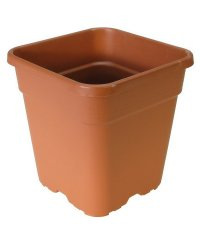 Square Pot Terracotta 19 x 19cm (5L)