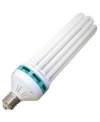 Energy saving lamp 200W  Growth