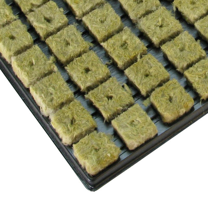Grodan Rockwool Tray Small Cubes (150 pcs)